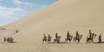 大漠风光骆驼骑行一日游