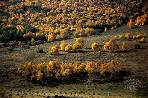 柳树沟旅游图片