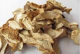 野生菌小白菇