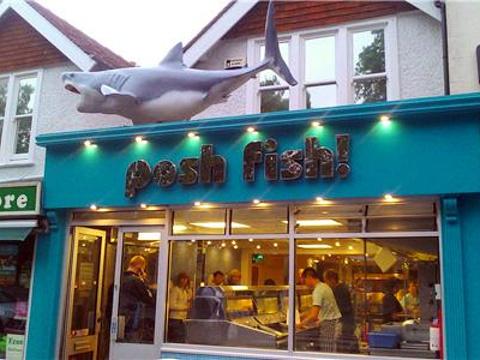 Posh Fish旅游景点图片