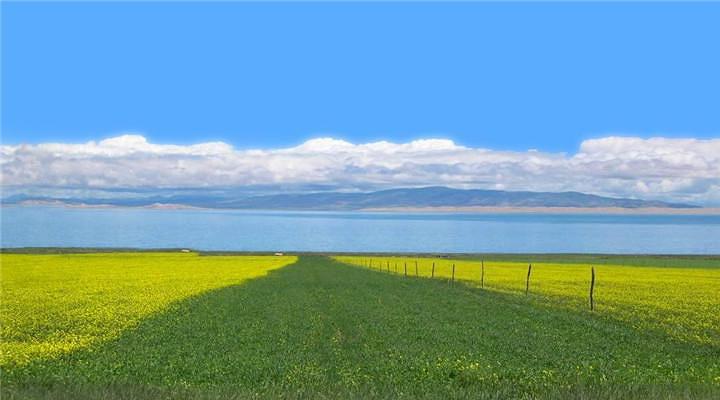 金银滩草原旅游图片