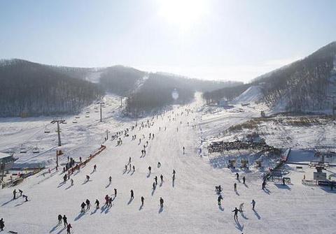 塞罕坝滑雪场的图片