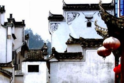 桃李园的图片