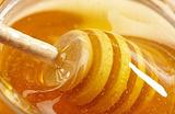 秦岭土蜂蜜