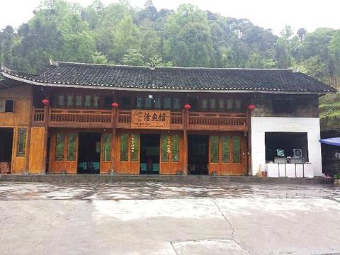 梵净山杨大姐活鱼馆