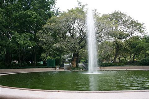 九龙公园的图片