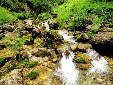 阿夏幽谷旅游景点图片