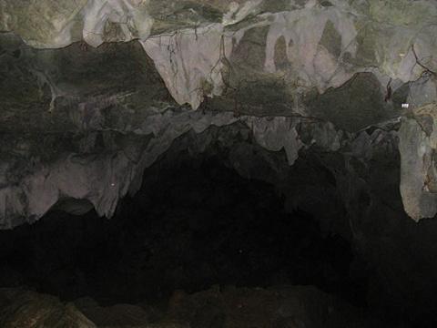 蝙蝠洞旅游景点图片