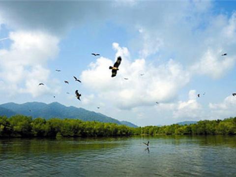 巨狮岛旅游景点图片