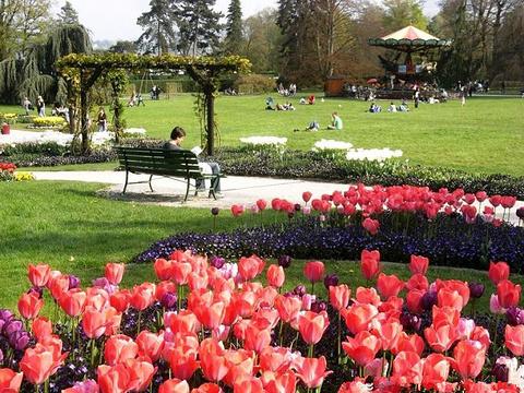 植物园旅游景点图片