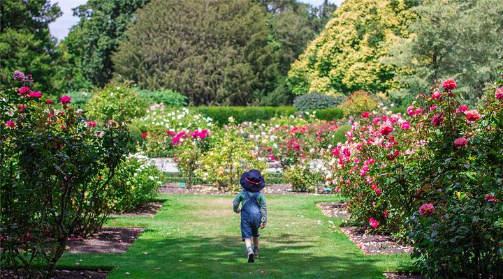 基督城植物园旅游图片