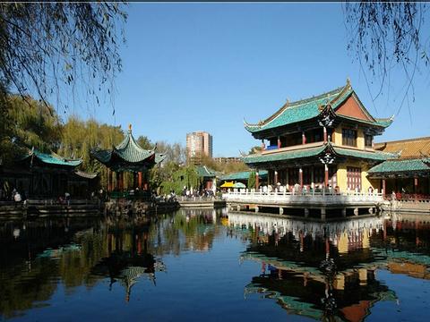 翠湖公园的图片
