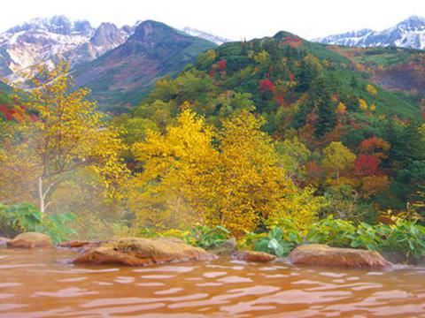 十胜岳温泉旅游景点图片