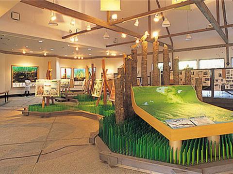 唐路湖Eco博物馆旅游景点图片
