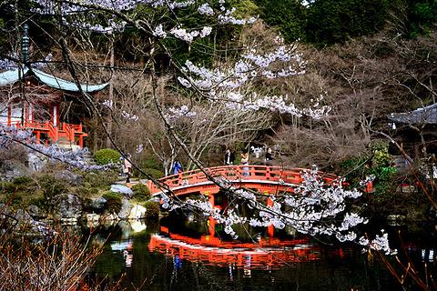京都旅游景点图片
