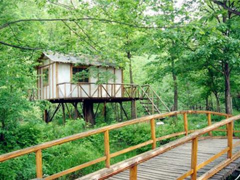 长白山生态植物园旅游景点图片