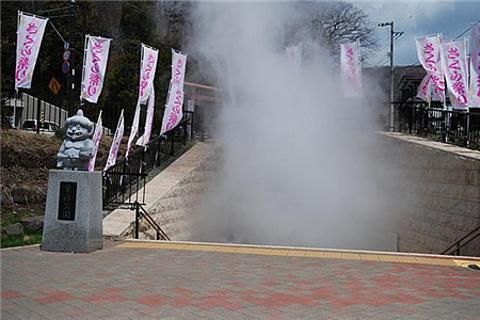泉源公园的图片