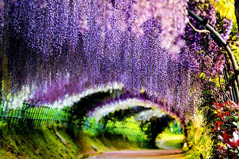 北九州市旅游图片