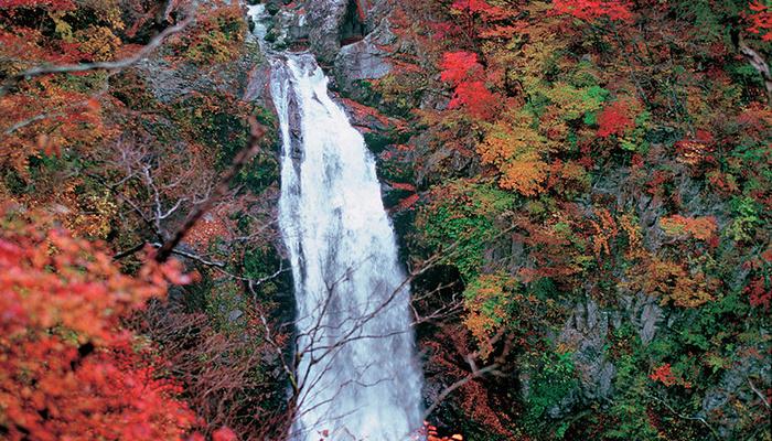 秋保大瀑布旅游图片