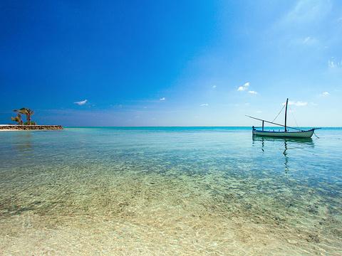 太阳岛旅游图片