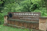 桫椤国家级自然保护区
