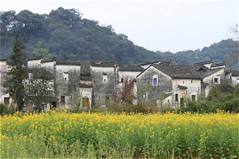 思溪延村旅游图片