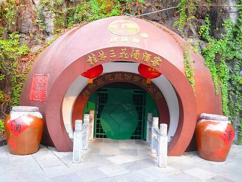 桂林三花酒酒窖