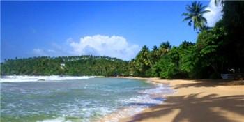 沙滩风情游