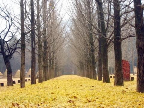 春川旅游图片