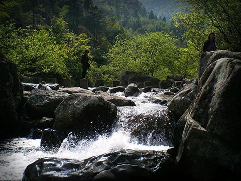 天目山旅游景点图片