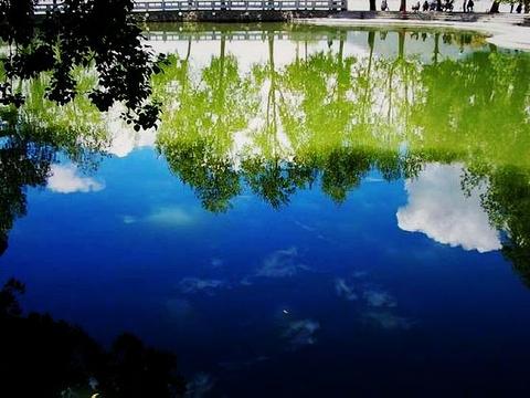 宗角禄康公园旅游景点图片