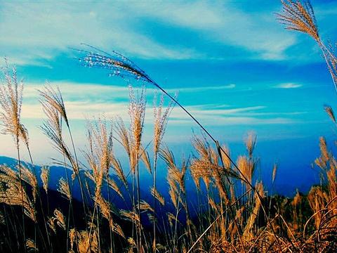 天池风景区旅游景点图片