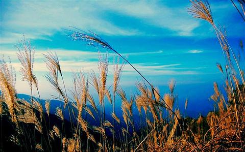 天池风景区的图片