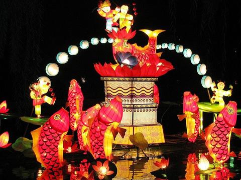 龙潭湖公园旅游景点图片