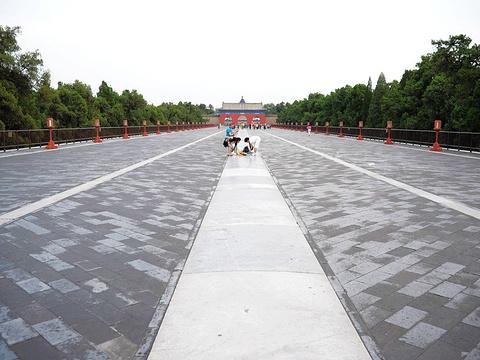 天坛公园旅游景点图片