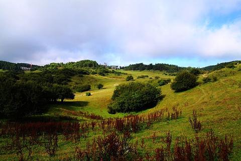 武陵山国家森林公园