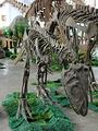 成都理工大学恐龙数字博物馆