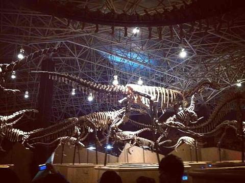 世界恐龙谷恐龙遗址公园旅游景点图片