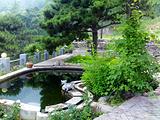鹫峰森林公园