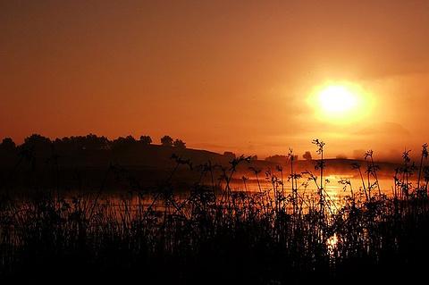 张北草原的图片