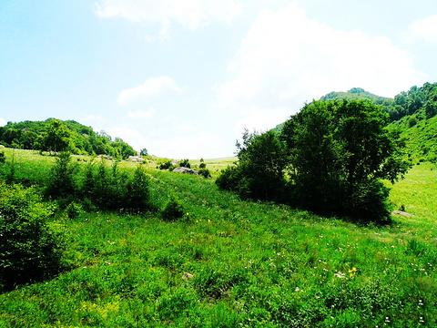 百花山旅游景点图片